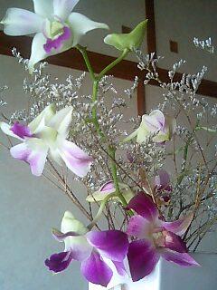 060921flower